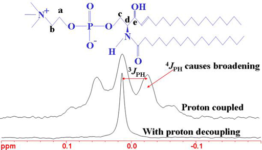 31phosphorus Nmr